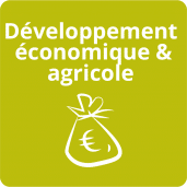 domaine d'intervention-developpement economique