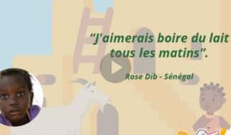 Une chèvre pour faire le plein de calcium au Sénégal