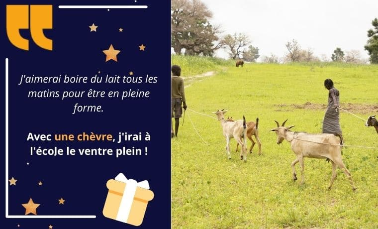 Une chèvre pour améliorer les revenus familiaux au Sénégal
